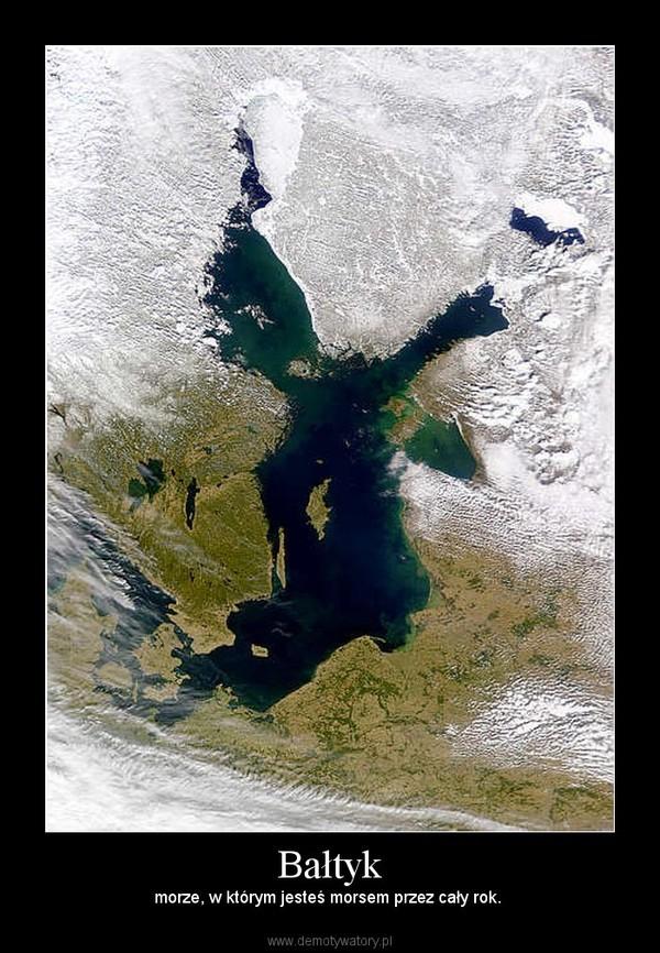 Bałtyk – morze, w którym jesteś morsem przez cały rok.