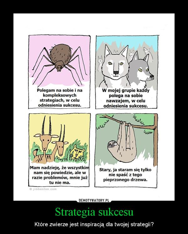 Strategia sukcesu – Które zwierze jest inspiracją dla twojej strategii?