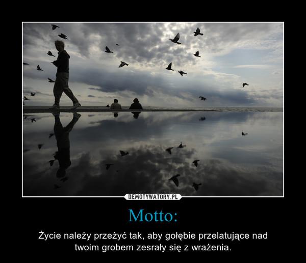 Motto: – Życie należy przeżyć tak, aby gołębie przelatujące nadtwoim grobem zesrały się z wrażenia.