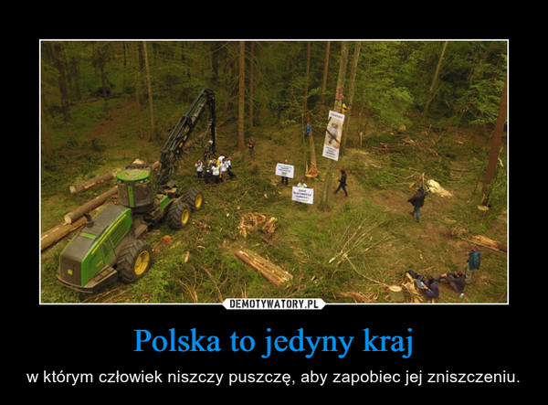 Polska to jedyny kraj – w którym człowiek niszczy puszczę, aby zapobiec jej zniszczeniu.