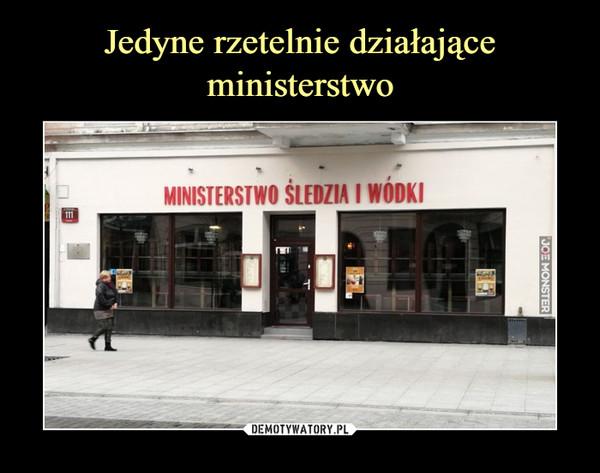 –  MINISTERSTWO ŚLEDZIA I WÓDKI