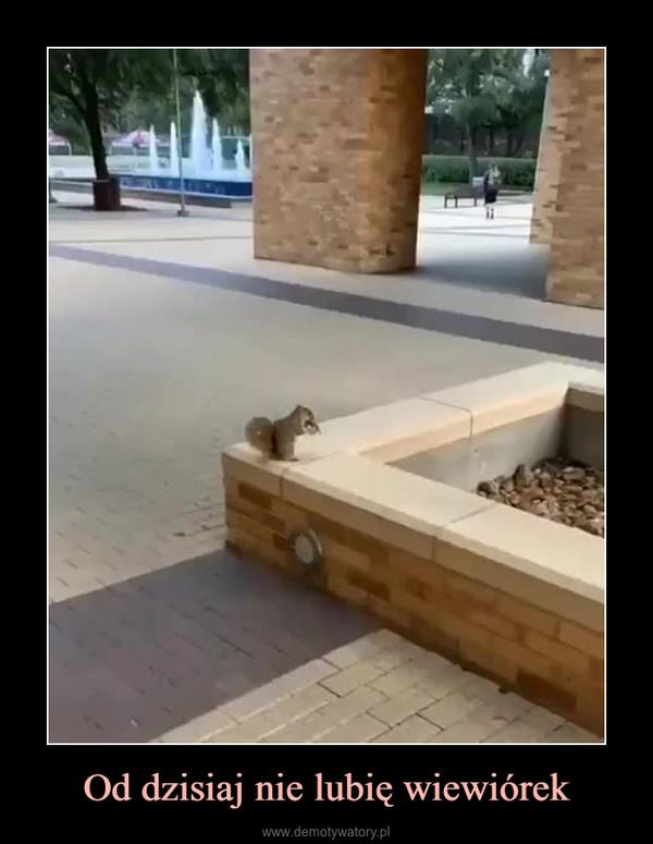 Od dzisiaj nie lubię wiewiórek –