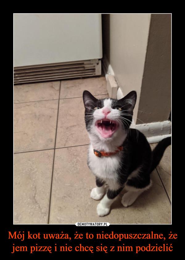 Mój kot uważa, że to niedopuszczalne, że jem pizzę i nie chcę się z nim podzielić –