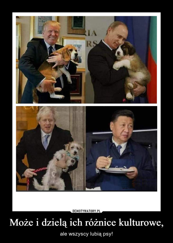 Może i dzielą ich różnice kulturowe, – ale wszyscy lubią psy!