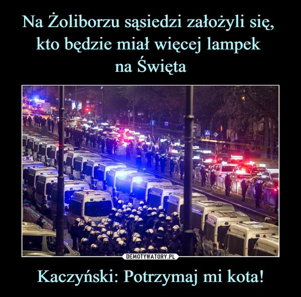Kaczyński: Potrzymaj mi kota! –