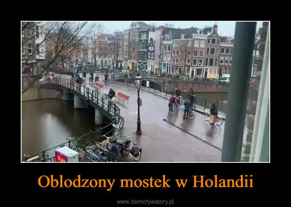 Oblodzony mostek w Holandii –