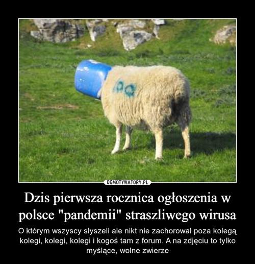 """Dzis pierwsza rocznica ogłoszenia w polsce """"pandemii"""" straszliwego wirusa"""