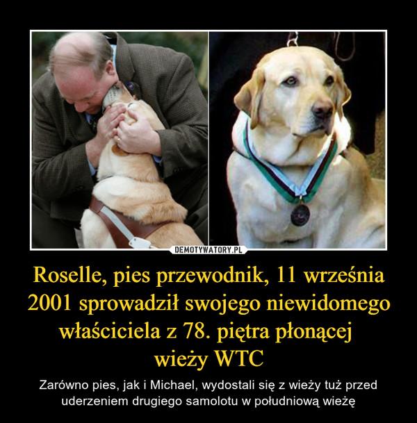 Roselle, pies przewodnik, 11 września 2001 sprowadził swojego niewidomego właściciela z 78. piętra płonącej wieży WTC – Zarówno pies, jak i Michael, wydostali się z wieży tuż przed uderzeniem drugiego samolotu w południową wieżę