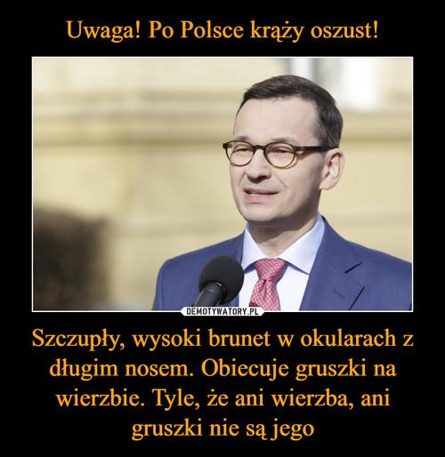 Uwaga! Po Polsce krąży oszust! Szczupły, wysoki brunet w okularach z długim nosem. Obiecuje gruszki na wierzbie. Tyle, że ani wierzba, ani gruszki nie są jego