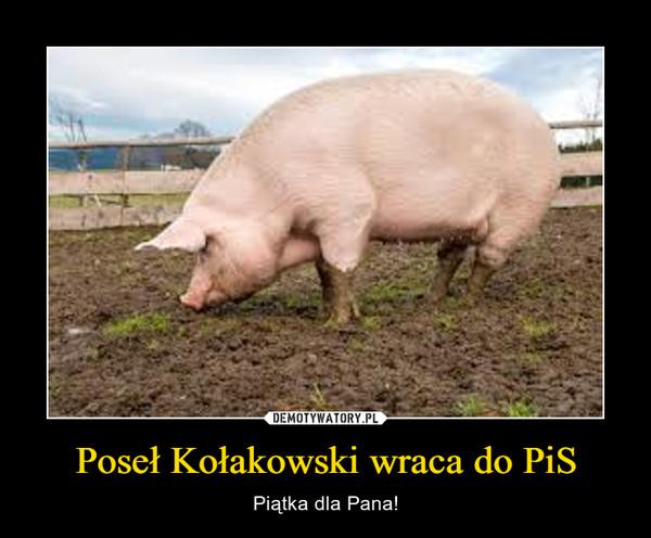 Poseł Kołakowski wraca do PiS