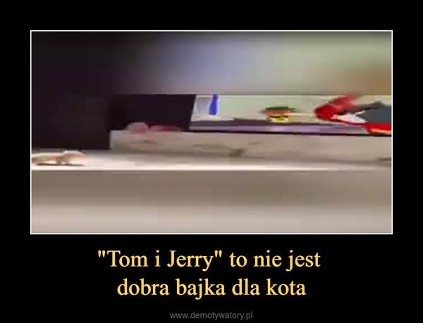 """""""Tom i Jerry"""" to nie jest dobra bajka dla kota –"""