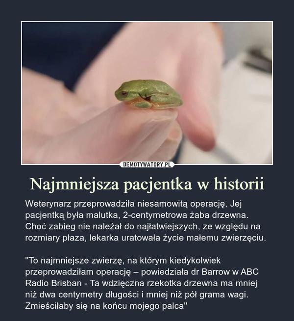 Najmniejsza pacjentka w historii – Weterynarz przeprowadziła niesamowitą operację. Jej pacjentką była malutka, 2-centymetrowa żaba drzewna. Choć zabieg nie należał do najłatwiejszych, ze względu na rozmiary płaza, lekarka uratowała życie małemu zwierzęciu. ''To najmniejsze zwierzę, na którym kiedykolwiek przeprowadziłam operację – powiedziała dr Barrow w ABC Radio Brisban - Ta wdzięczna rzekotka drzewna ma mniej niż dwa centymetry długości i mniej niż pół grama wagi. Zmieściłaby się na końcu mojego palca''
