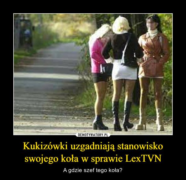 Kukizówki uzgadniają stanowisko swojego koła w sprawie LexTVN – A gdzie szef tego koła?