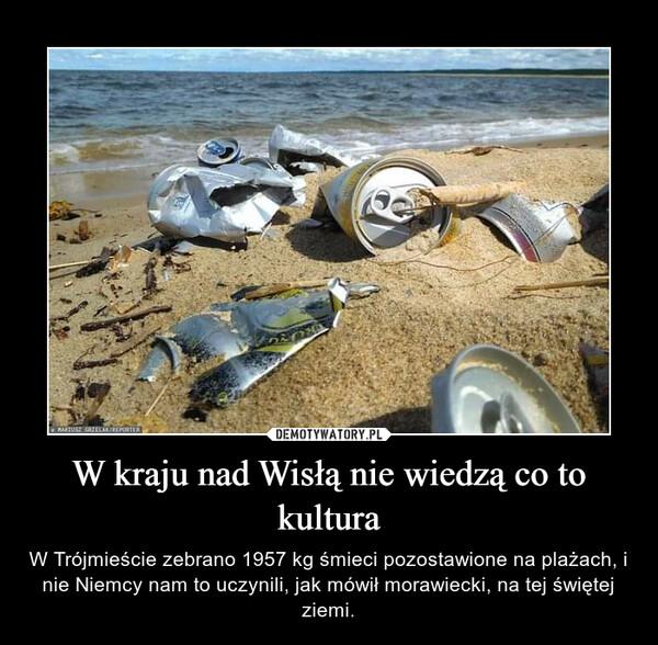 W kraju nad Wisłą nie wiedzą co to kultura – W Trójmieście zebrano 1957 kg śmieci pozostawione na plażach, i nie Niemcy nam to uczynili, jak mówił morawiecki, na tej świętej ziemi.