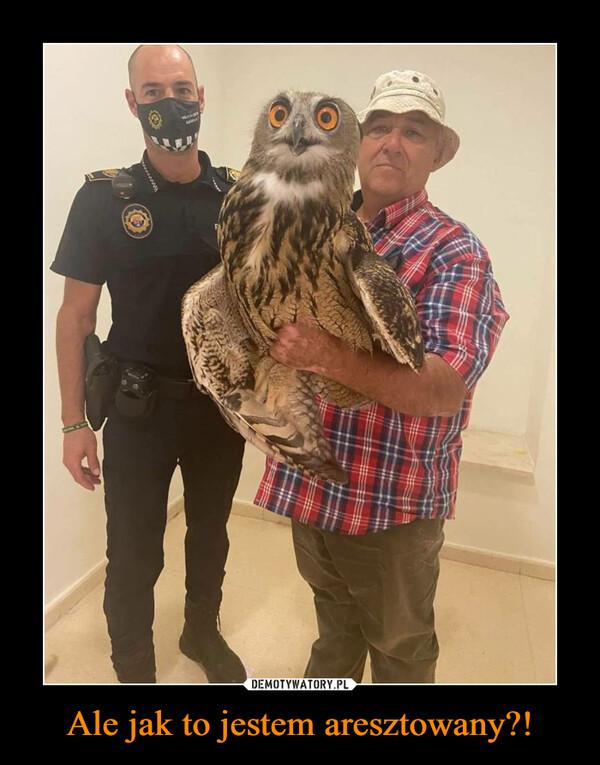 Ale jak to jestem aresztowany?! –